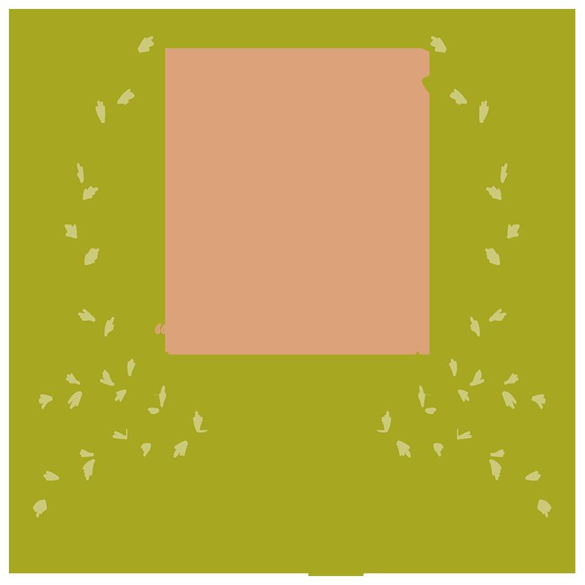 No What ifs