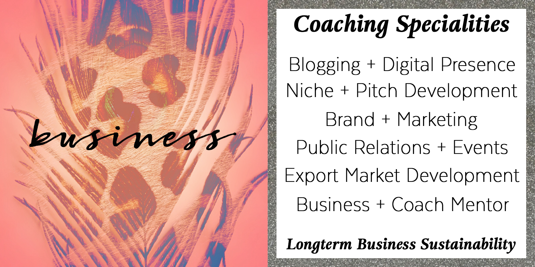 Business, Entrepreneur, Solopreneur Coaching Specialities